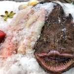 rana pescatrice fresca
