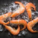 ittica brianza pescato e surgelato